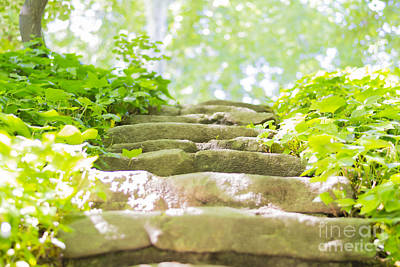 Photograph - Stone Stairs by Stefano Piccini