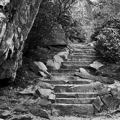 Photograph - Stone Stairway by Patrick M Lynch