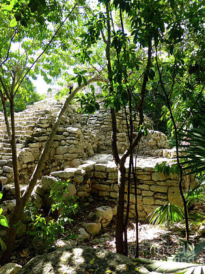 Photograph - Stone Steps In The Jungle by Francesca Mackenney