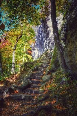 Kinzua Photograph - Stone Steps To Rimrock Trail  by Shelley Smith