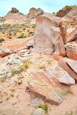 Photograph - Stone Tablet In Valley Of Fire by Ray Mathis