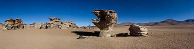Andean Photograph - Stone Tree, Eduardo Avaroa Andean Fauna by Panoramic Images