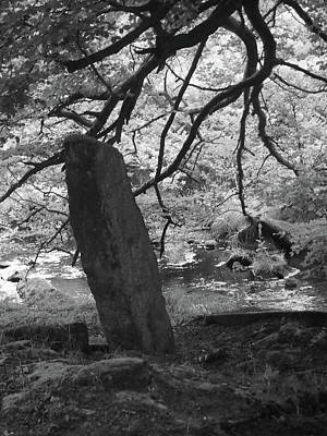 Megalith Photograph - Stone Under The Trees by Philip Openshaw