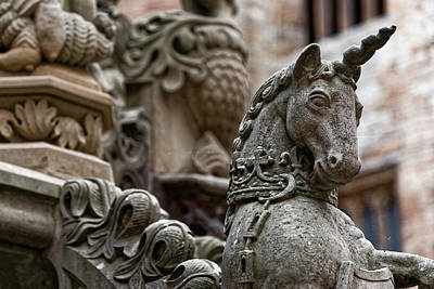Photograph - The Last Unicorn by Scott Hill