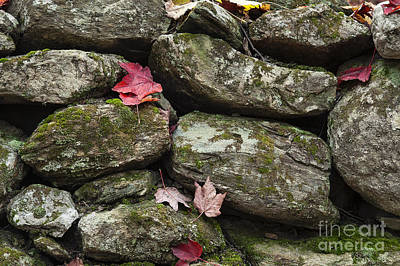 Fieldstone Photograph - Stone Wall Autumn by John Greim