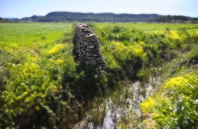 Photograph - Stone Wall In Country Land Waiting For Nobody by Pedro Cardona