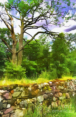 Photograph - Stone Wall In Glencoe by Judi Bagwell