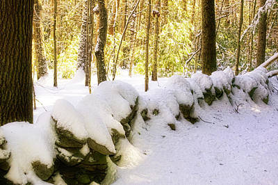 Photograph - Stone Wall In Winter by Gary Shepard