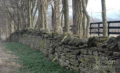 Photograph - Stone Wall by Linda Mesibov