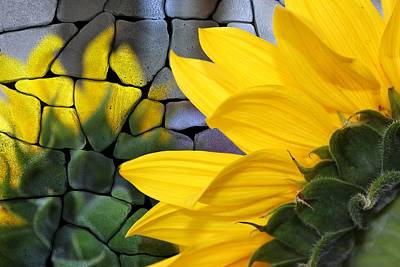 Sunflowers Painting - Stoned Sunflower by Barbara Chichester
