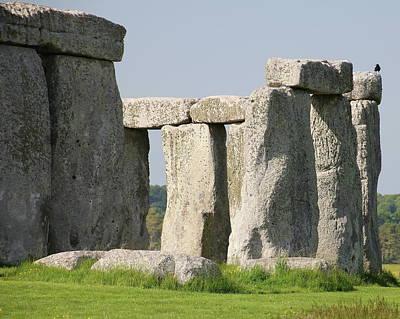 Abstract Animalia - Stonehenge by Arvin Miner