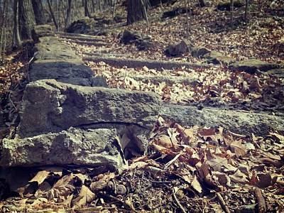 Photograph - Stones And Leaves by Kyle West