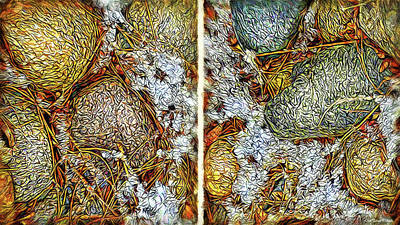 Crystalline Digital Art - Stones In Snow - Diptych by Joel Bruce Wallach