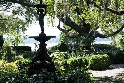 Photograph - Stoney Garden by Ed Waldrop