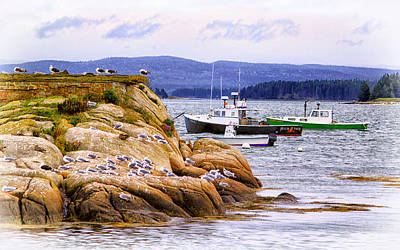 Photograph - Stonington Harbor View by Carolyn Derstine