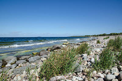 Photograph - Stony Bay With Green Reeds by Kennerth and Birgitta Kullman