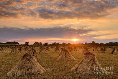 Stook Sunset Art Print by Richard Thomas