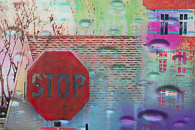Photograph - Stop For Color by Susan Stone