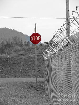 Photograph - Stop Here And There Too by Marie Neder