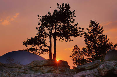 Photograph - Stop Right Here - Rocky Mountain Np - Sunrise by Nikolyn McDonald