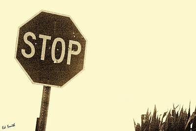 Stop Shooting Stop Signs Art Print by Ed Smith