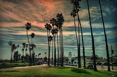 Photograph - Stopover In Santa Barbara by Hanny Heim