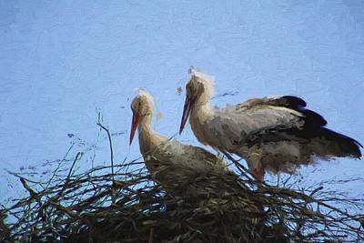 Stork Mixed Media - Stork Couple by Dale  Witherow