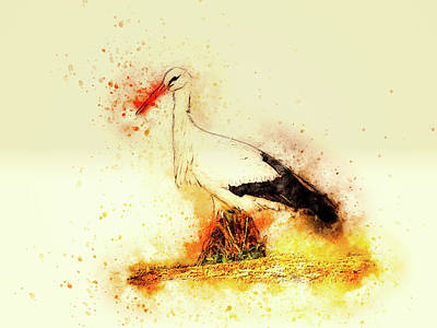 Abstract Wildlife Mixed Media - Stork by Ractapopulous