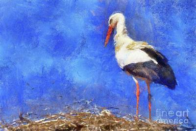 Royalty-Free and Rights-Managed Images - Stork by Sarah Kirk