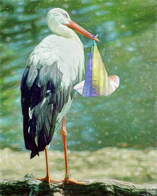 Photograph - Stork With Baby - Green by Nikolyn McDonald