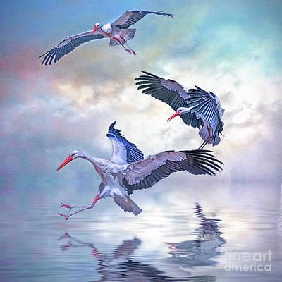 Storks Landing Art Print by Brian Tarr