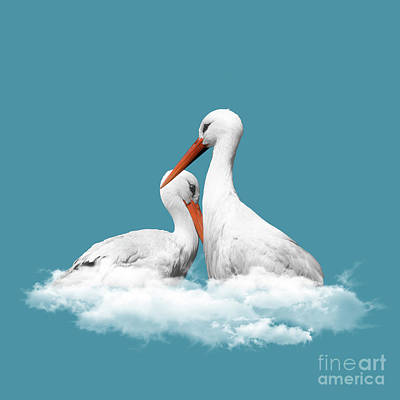 Sweet Digital Art - Storks On Clouds by Absentis Designs