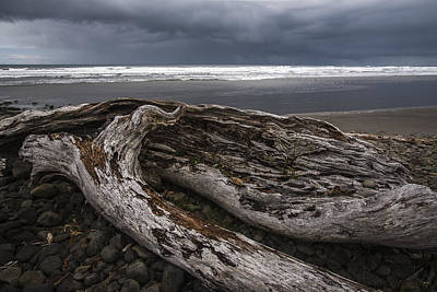 Photograph - Storm And Driftwood by Robert Potts