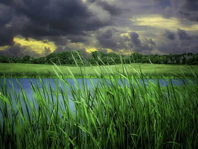 Photograph - Storm Brewing by William Tanata