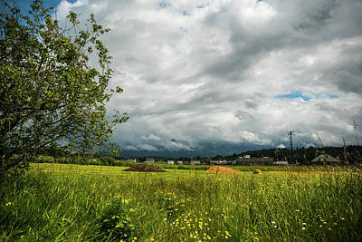 Photograph - Storm Clouds And Wild Flowers by Tom Cochran