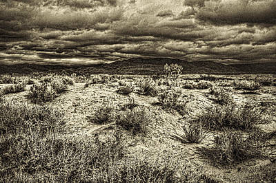 Photograph - Storm Clouds Over The Mohave Desert by Roger Passman