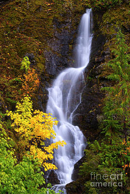 Photograph - Storm Creek Falls by Mike Dawson
