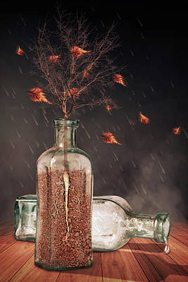 Outdoor Still Life Digital Art - Storm In A Bottle by Mihaela Pater