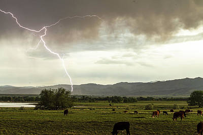Photograph - Storm On The Range by James BO Insogna