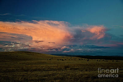 Photograph - Storm On The Range by Jim And Emily Bush