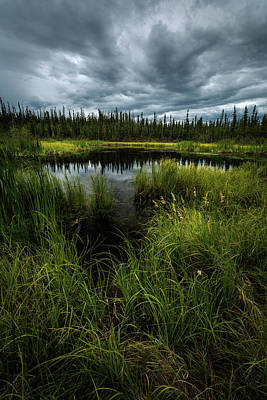 Photograph - Storm Over The Pond by Rick Strobaugh