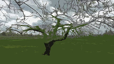 Digital Art - Storm Tree by Joyce Wasser