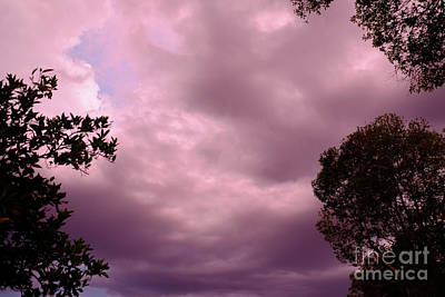 Photograph - Storm Warning by Tracey Everington