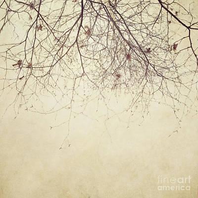 Poetic Photograph - Stormbound by Priska Wettstein