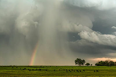 Photograph - Stormin Rainbow by James BO Insogna