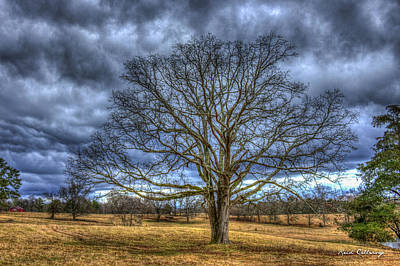 Farm Scene Photograph - Stormy Day Oak Winter Farm Scene Art by Reid Callaway