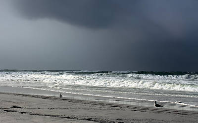 Panama City Beach Photograph - Stormy by Debra Forand