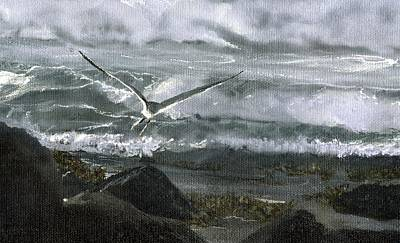 Stormy Flight 2  Art Print by Charles Parks