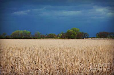 Photograph - Stormy Lizard Lake by Kathy M Krause