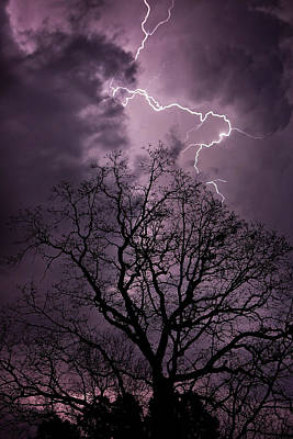 Photograph - Stormy Night by Eilish Palmer
